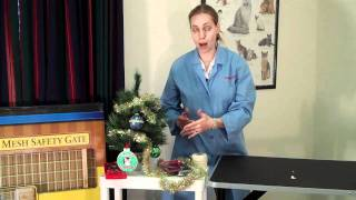 Holiday Decorating Hazards for Pets
