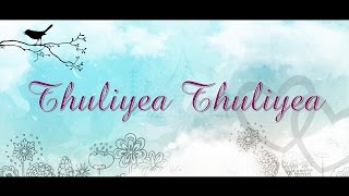 Thuliye Thuliye - Lyrics  | 2 mini song | Music :Thameem Ansari