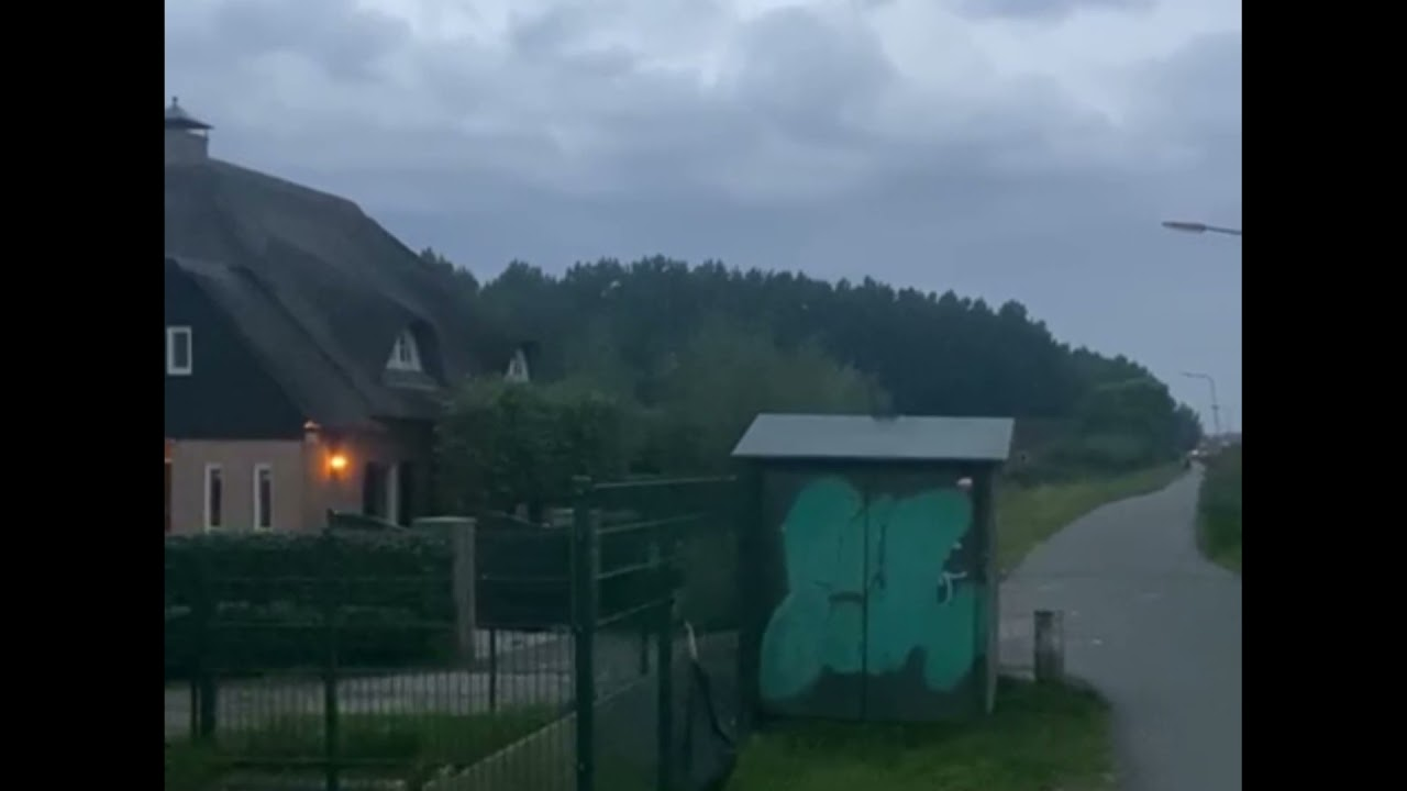 Download Schoten bij bos Alblasserdam