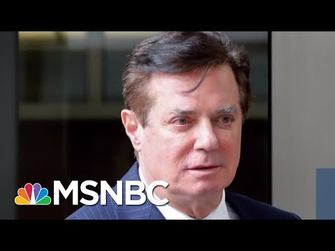 Watergate Prosecutor: Manafort Plea Deal 'Basically Pardon Proof' | The Beat With Ari Melber | MSNBC