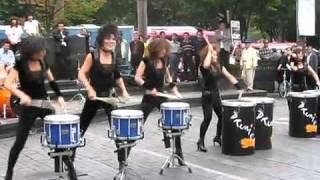 Drum Cat