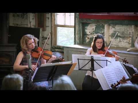 Twenty Summers: Music for Barns