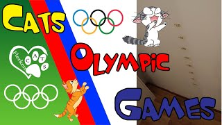 Cats Olympic games