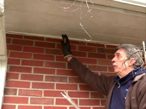 how to stop birds nesting in soffit