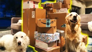 THE BIGGEST FAN MAIL PACKAGE EVER - Super Cooper Sunday 189