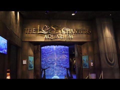 The Lost Chamber Aquarium /Atlantis the Palm