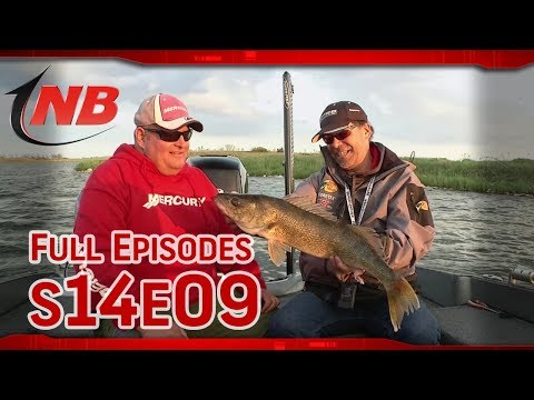 Season 14 Episode 9: Glacial Lakes: Testing Cranks for Shallow Water Walleye