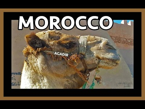 Agadir, Morocco: Travel Guide, Camel Ride, Souk, Beach, Kasb