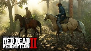 Red Dead Redemption 2 - NEW LEAKS! Secret Previews, Gameplay Soon, Next Reveal & More!