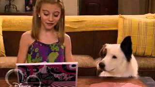 Собака точка ком   1 сезон, 16 4серия