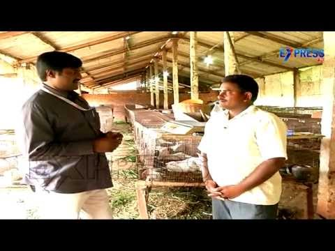 Success Story Of Rabbit Farming By Nadendla Brahmaiah | Express TV