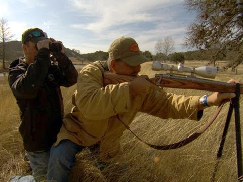 Can Hunting Endangered Animals Save The Species?