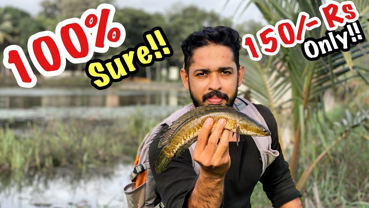 """Simple"" ആയി മീൻ പിടിക്കാം ഇത് ഉണ്ടെങ്കിൽ | Catch and Cook Kerala snakehead | Surprising Result"