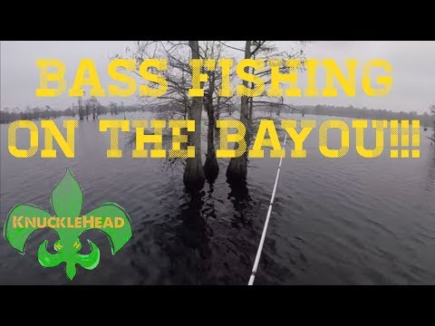 Bass Fishing On Black Bayou.