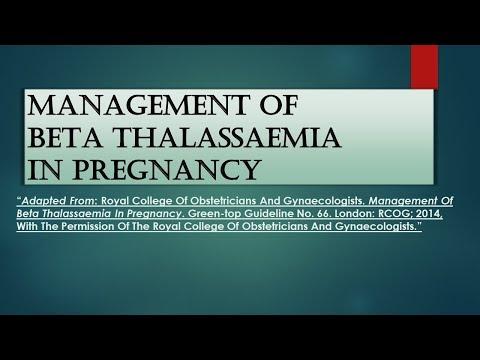 RCOG Guideline Management of Beta Thalassaemia in Pregnancy No.66