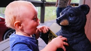 BABY VS BLACK BEAR