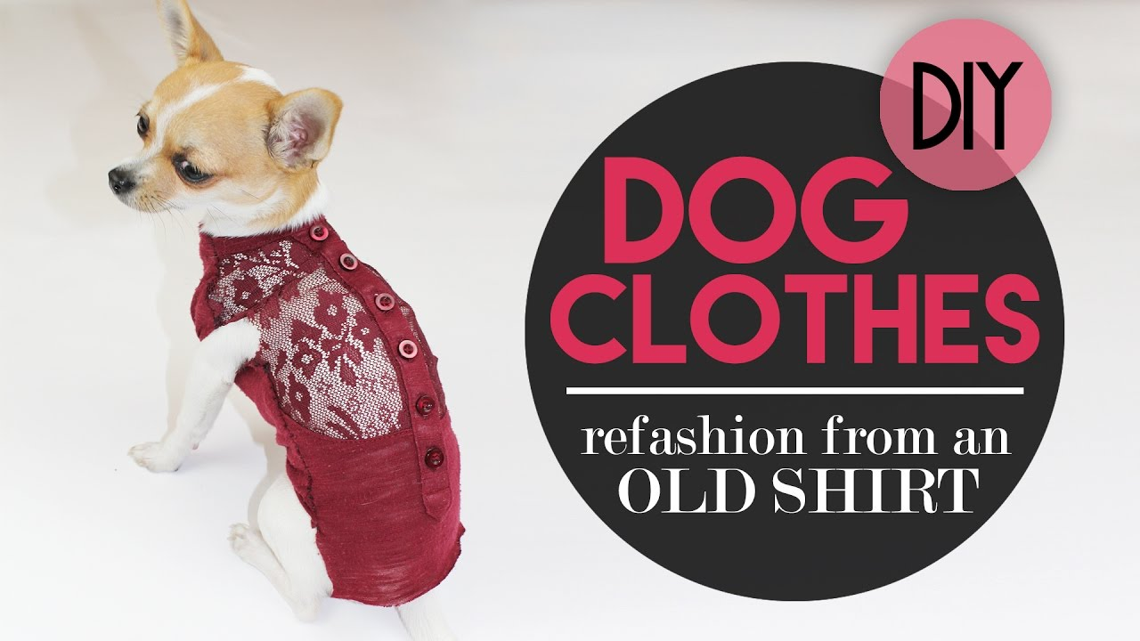 f45c9ec7d DOG CLOTHES FROM A OLD T-SHIRT | DIY - YouTube