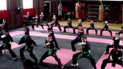 Phoenix Schools of Martial Arts (Croydon) - PMA Kickboxing