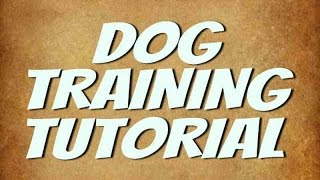 Dog Training Tutorial Video | Fix Your Dog Behavior Problems (HD)