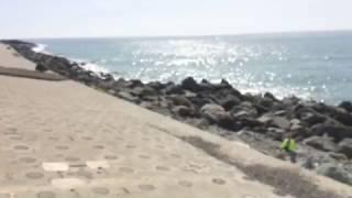 видео Адлер, частный сектор без посредников, цены на жилье у моря