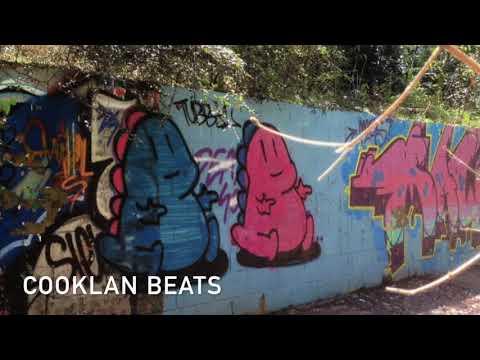 TV Rock ft. Seany B - Flaunt It (Kidd K Bootleg)