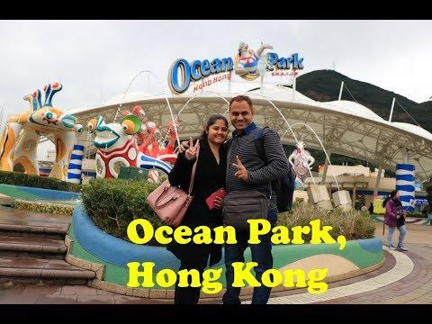 one-day-visit-to-ocean-park-(highlights),-hong-kong