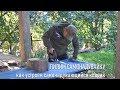 Пилим самонадувайку: как устроен самонадувающийся туристский коврик