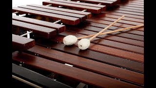 Percussion Students of Chris Froh: Compositions by UC Davis Students thumbnail