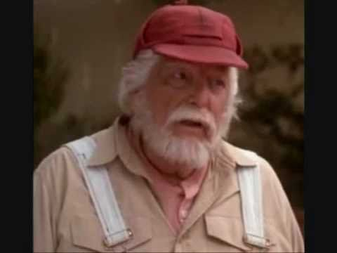 denver pyle pictures