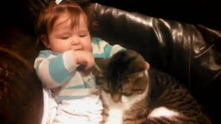 Cute and Funny Babies Laughing At Cats Compilation   Best Funny Videos