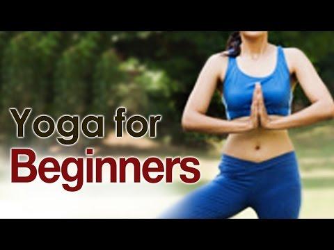 The Various Yoga Asanas For Beginners - Yoga For Beginners