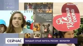 Москва 24. Новости. Большой летний фестиваль добровольцев