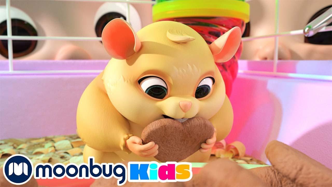 CoComelon en Español - La Mascota de la Clase   Canciones Infantiles   Moonbug en Español