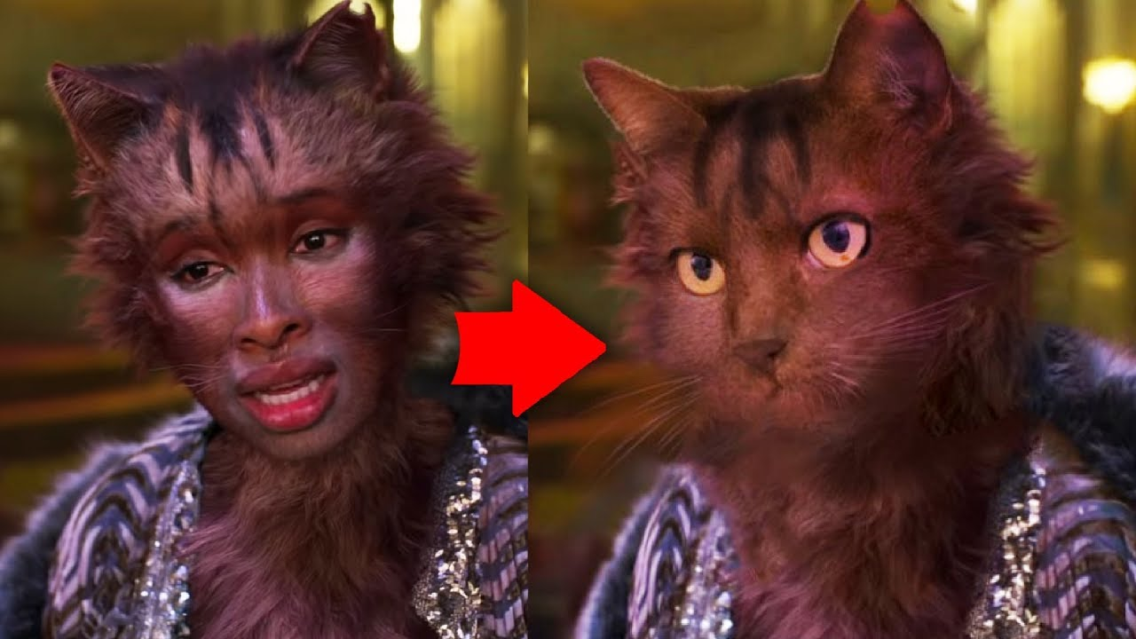 Idris Elba on the plot of Cats: 'I guess it's about a cat...'