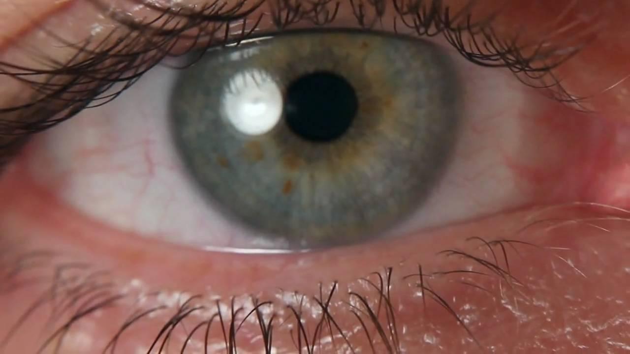 Augen Nahaufnahme