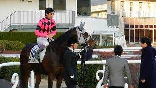 最終レース後、サインする武豊騎手。スマートダンディーの口取り式。現地映像、京都競馬場 武豊 検索動画 4