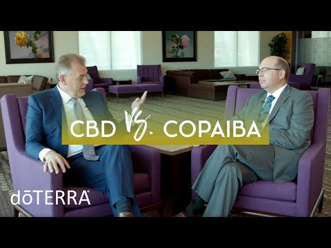 cbd-oil-vs-copaiba-oil-–-dr.-hill-and-dr.-o-discuss-how-cbd-and-copaiba-work