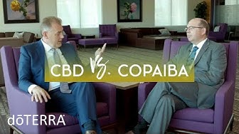 CBD Oil vs Copaiba Oil – Dr. Hill and Dr. O Discuss How CBD and Copaiba Work