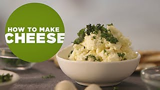How to Make Cheese - DIY Network