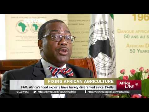 Fixing African agriculture: Several sub-Saharan countries are facing food insecurity