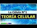 Teoría celular - Postulados |Todo sobre la Célula 1| Biología
