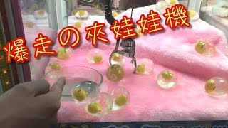 【菜喳日常】爆走の夾娃娃機 thumbnail