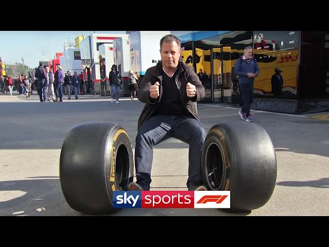 How does DAS work?   Ted Kravitz goes in depth on new 'Dual Axis Steering' system