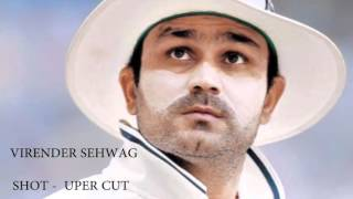 Cricket top 10 signature shots of players SachinTendulkar MSdhoni Virenders