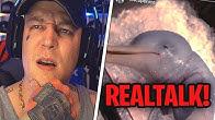 Realtalk zum Baby Delfin Video🤔 Doppelmoral der Zuschauer?🙃 MontanaBlack Realtalk