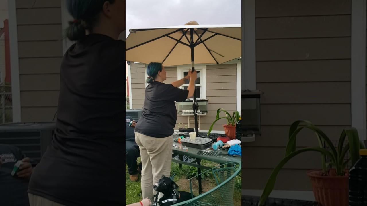 7.5 Foot Beach Or Patio Umbrella