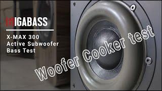 Gigabass X Max 300 Subwoofer Bass Test || Woofer Cooker || Spectral Bass || Gigabass Subwoofer