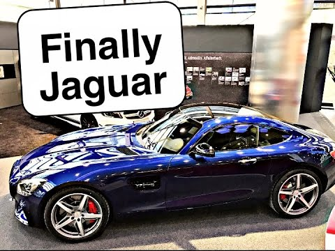 Finally Brought Jaguar