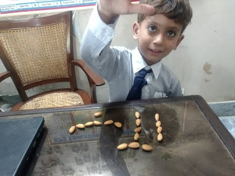 کھانے والی چیز سے بچے جلد سیکھ لیتے ہیں۔