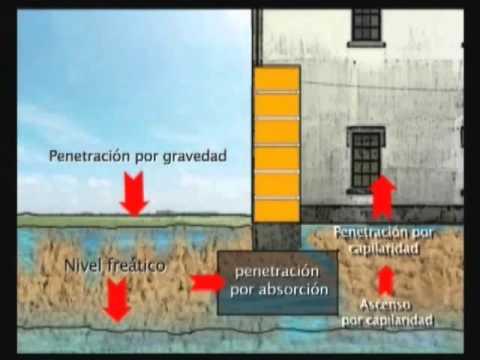 Problemas de humedad y soluciones en las edificaciones - Soluciones para mosquitas de la humedad ...